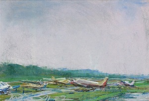 "Wings Field (II); pastel on paper; 11.5""x17.5"""