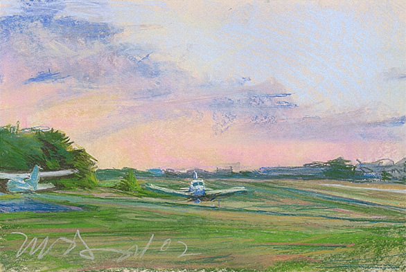 "Wings Field (I); pastel on paper; 11.5""x18"""